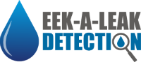 Eek A Leak Detection Logo png 200